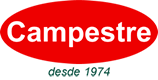 Óleo de Girassol   Campestre